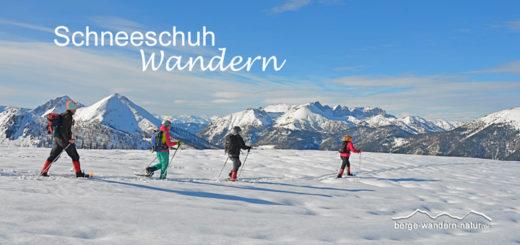 gefuehrte schneeschuhwanderung steinberg achenkirch