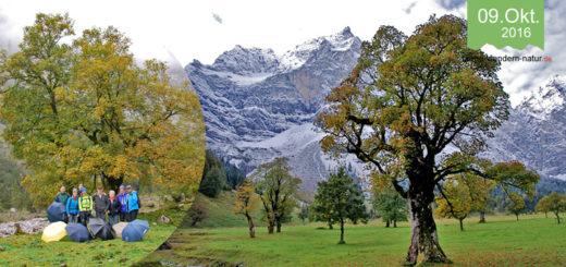 Grosser Ahhornboden Herbstwandernung in der Eng