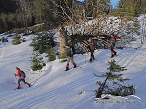 schneeschuhwanderungen-fuer-natur-geniesser