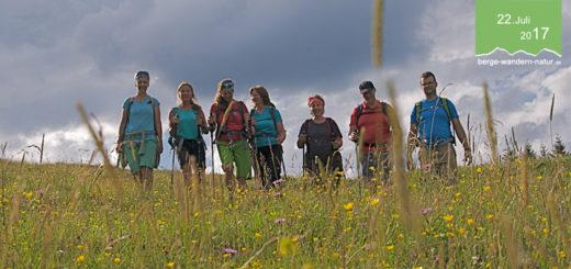 wandern-karwendel-faszinierende-alpenflora