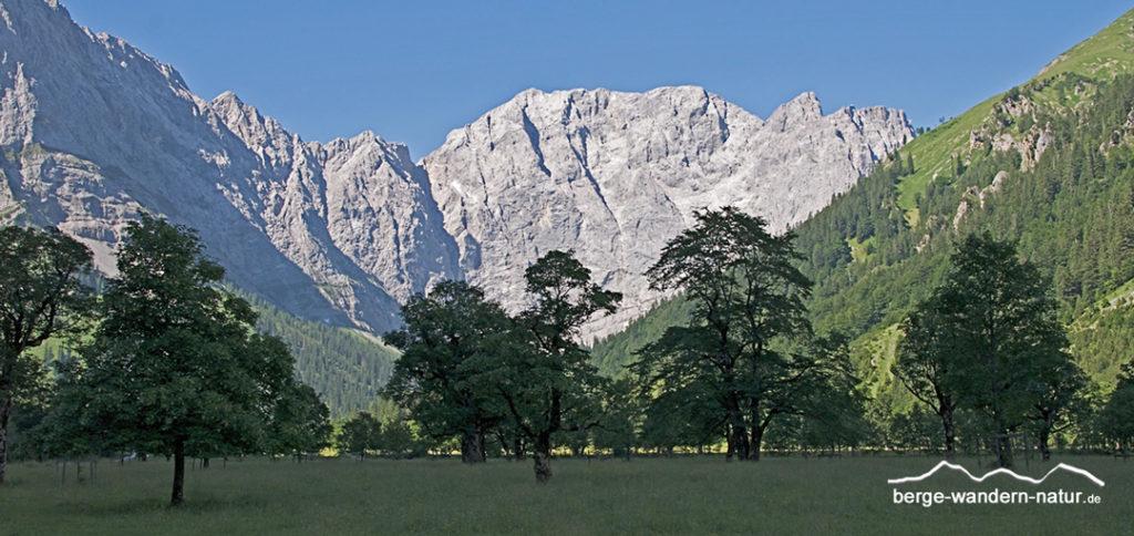 bergwandern-muenchen-naturfuehrungen-mit-der-bahn
