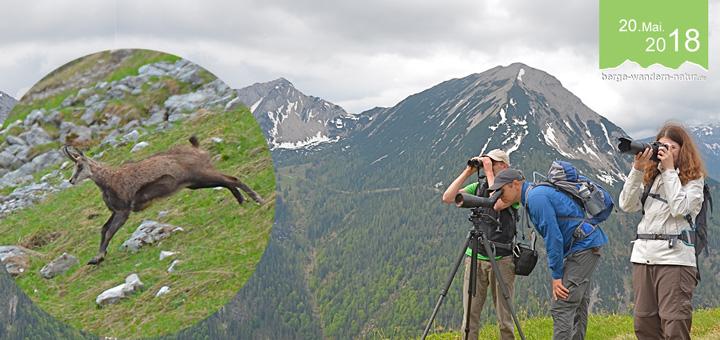 gefuehrte-wanderung-bayerische-alpen