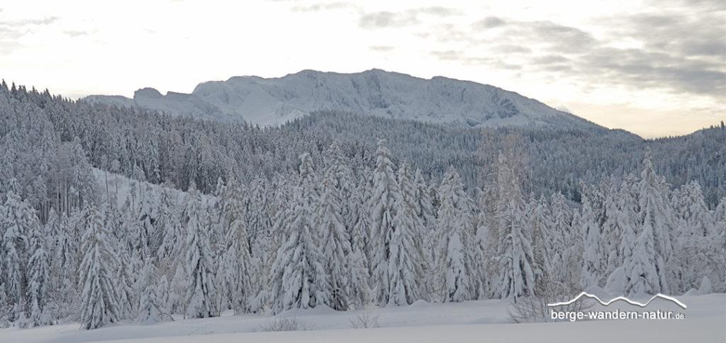 Winterlandschaft im Tölzer Land mit der Benediktenwand im Hintergrund