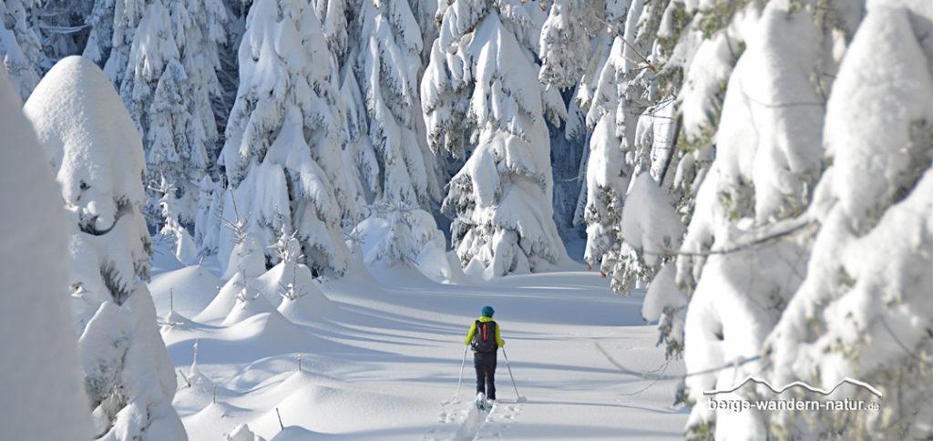 einsame Schneeschuhwanderin in den bayrischen Alpen