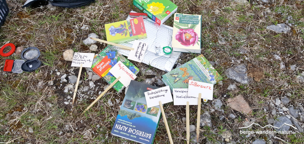 Bestimmungsbücher Blumen und Schmetterlinge