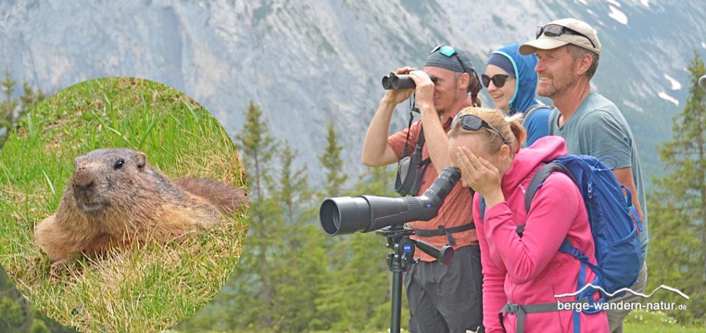 Wandergruppe bei Murmeltierbeobachtung mit Fernglas und Spektiv von ZEISS