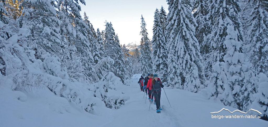 Schneeschuhwander Gruppe in tief verschneiter Winterlandschaft