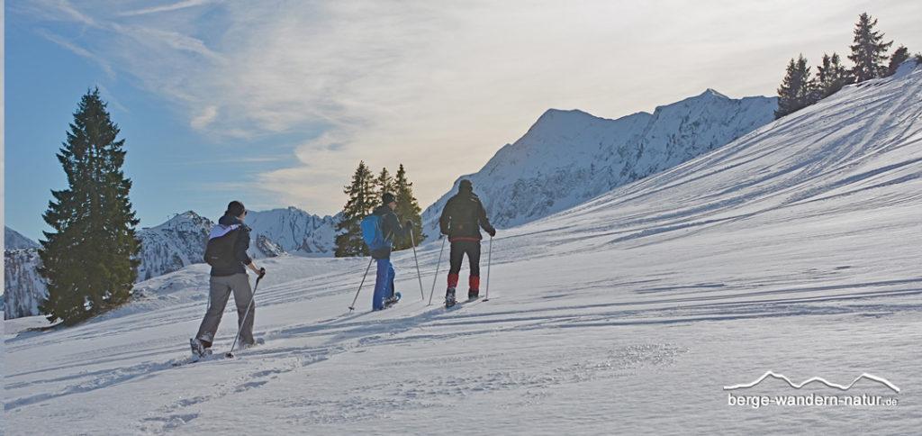 Schneeschuhgruppe beim Aufstieg Richtung Hochplatte