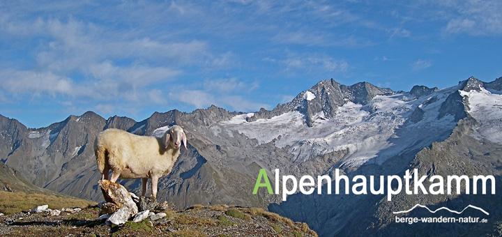 gefuehrte Alpenueberquerung Alpenhauptkamm